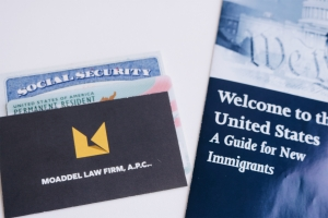 Immigration Lawyer Green Cards